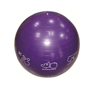 Illustrated Stability Ball U2108