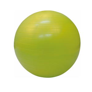 Anti-Burst Gym Ball U2103